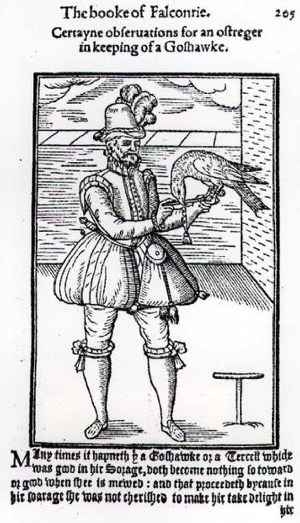 Detail of A Falconer with his Goshawk by English School