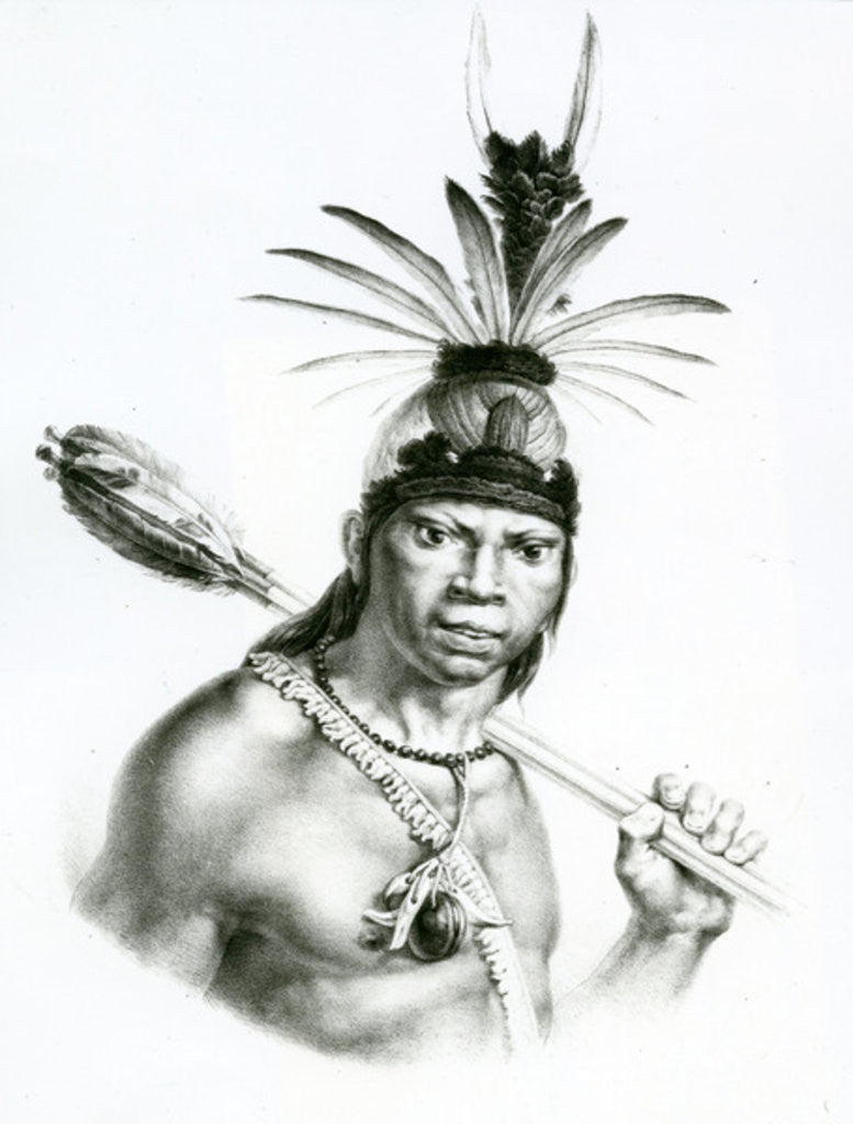 Detail of Chief Camacan Mongoyo by Charles Etienne Pierre Motte