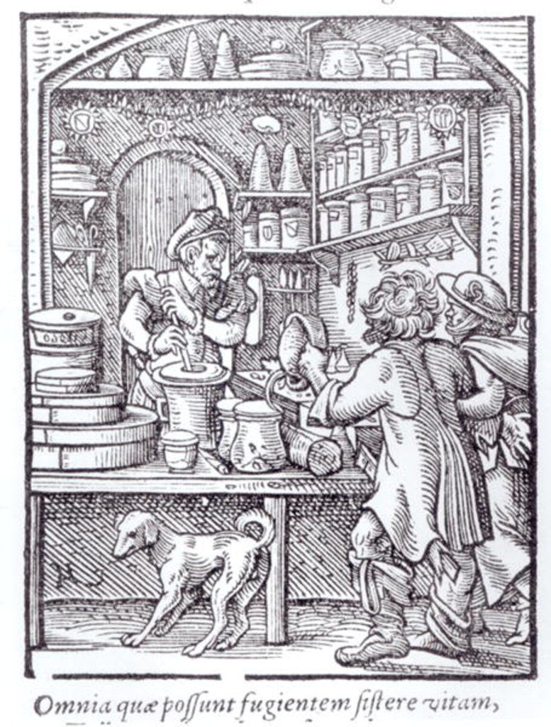 Detail of The Apothecary, published by Hartman Schopper by German School
