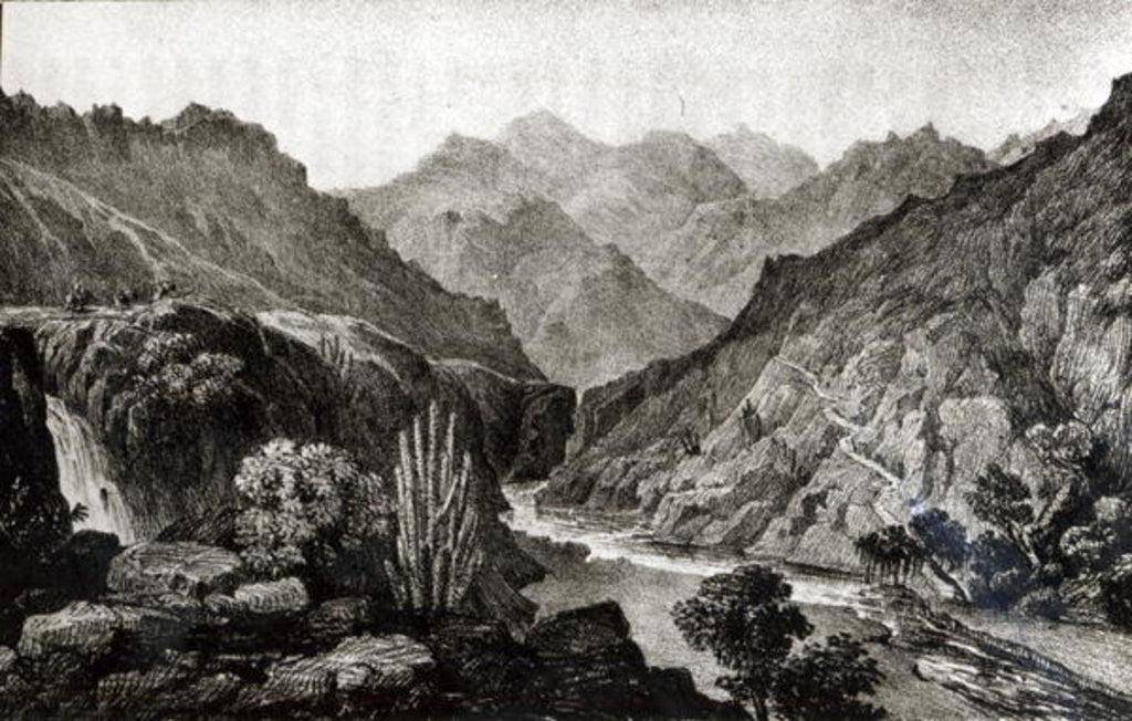 Detail of View in the Cordillera by John Miers