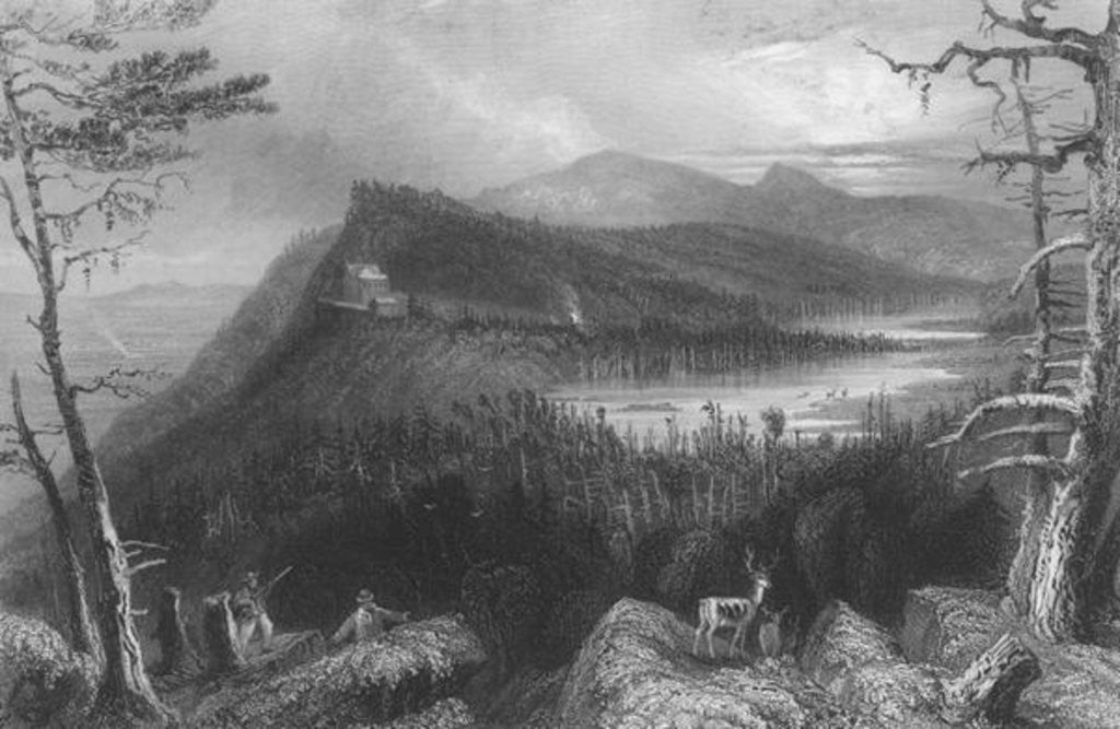 Detail of The Two Lakes and the Mountain House on the Catskills by William Henry Bartlett