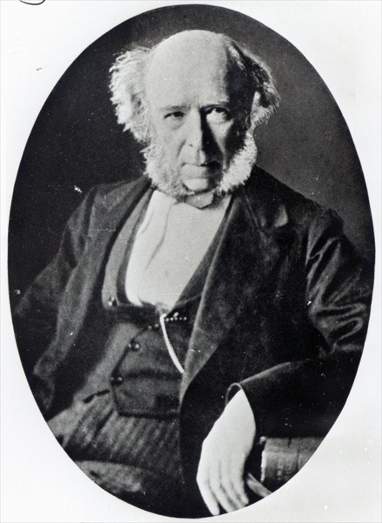 Detail of Herbert Spencer by English Photographer