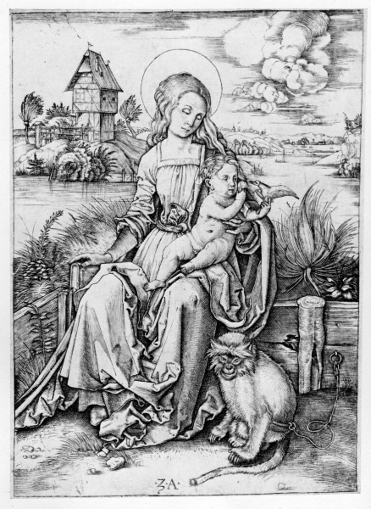 Detail of Madonna with the monkey by Albrecht Durer or Duerer