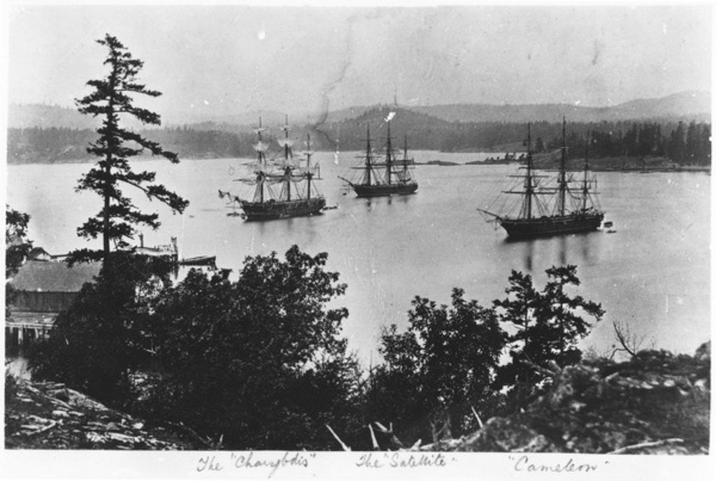 Detail of HMS Charybdis, HMS Satellite and HMS Cameleon at Esquimalt Royal Navy Dockyard, British Columbia, c.1880s by English Photographer