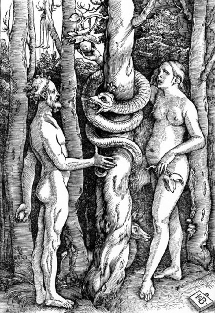 Detail of The Fall of Man by Hans Baldung Grien