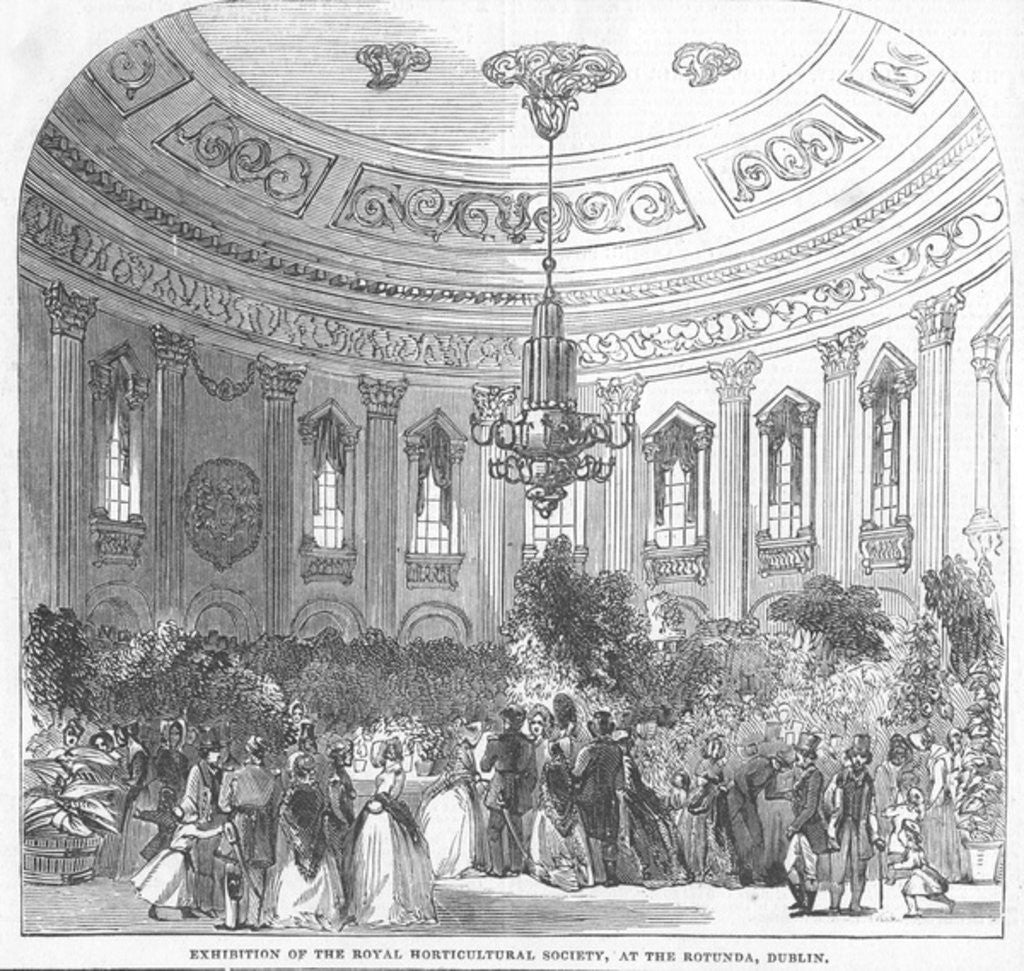 Detail of Exhibition of the Royal Horticultural Society, at the Rotunda, Dublin by English School