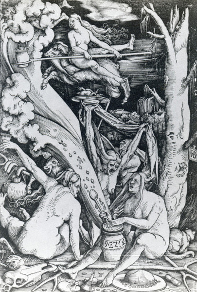 Detail of The Witches at the Sabbath by Hans Baldung Grien
