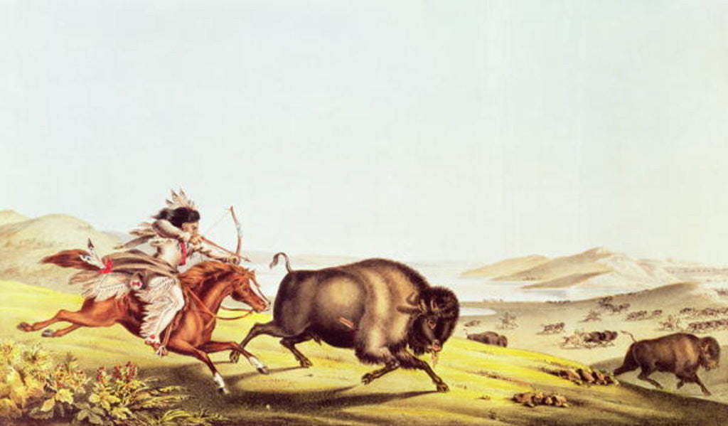 Detail of Hunting the Buffalo by American School