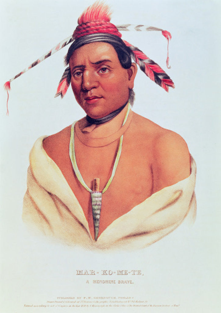 Detail of Portrait of Mar-Ko-Me-Te, A Menomene Brave by Charles Bird King