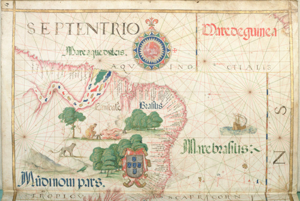 Detail of Mouth of the Amazon, Brazil, detail from a world atlas by Diego Homem