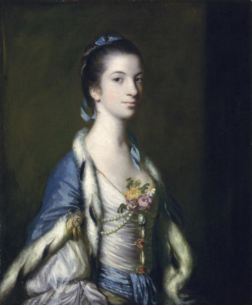Detail of Portrait of a Lady by Sir Joshua Reynolds