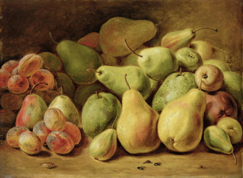 Detail of Fruit Still Life by Johann Friedrich August Tischbein