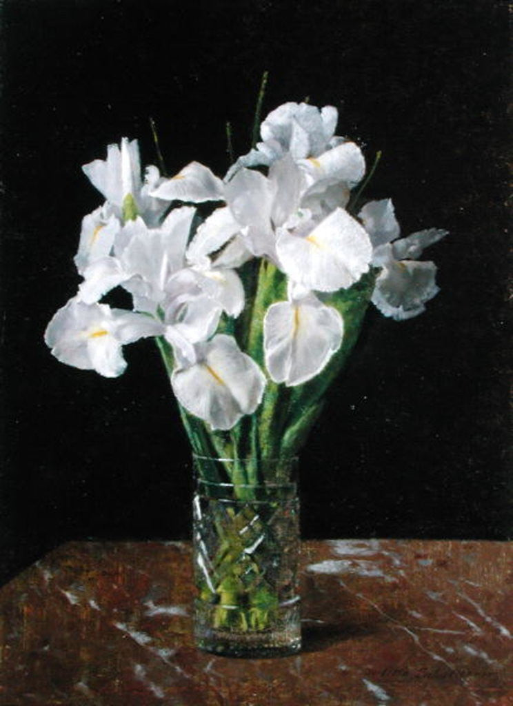 Detail of Irises by Otto Scholderer