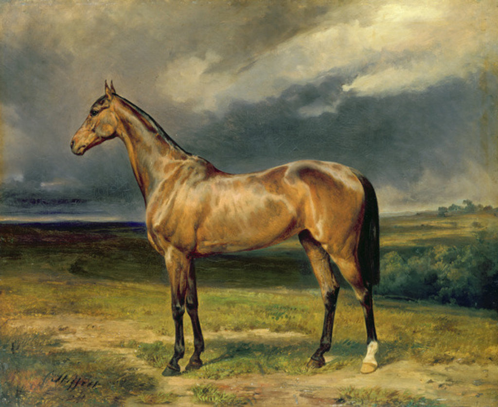Detail of 'Abdul Medschid' the chestnut arab horse by Carl Constantin Steffeck