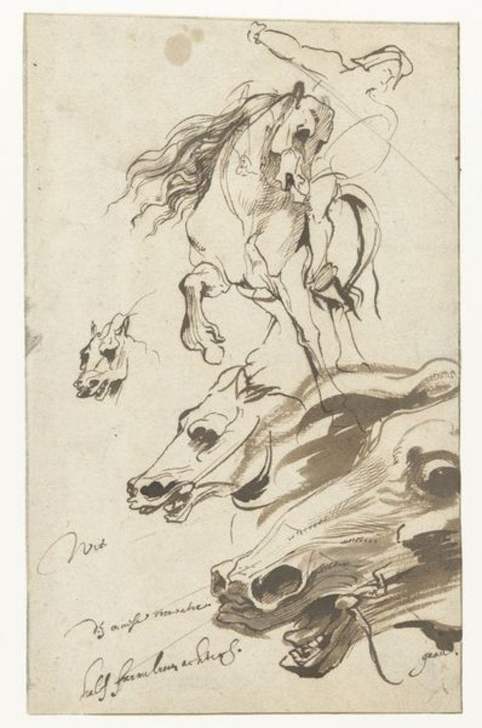 Detail of Study of Rider and head of a Horse by Sir Anthony van Dyck