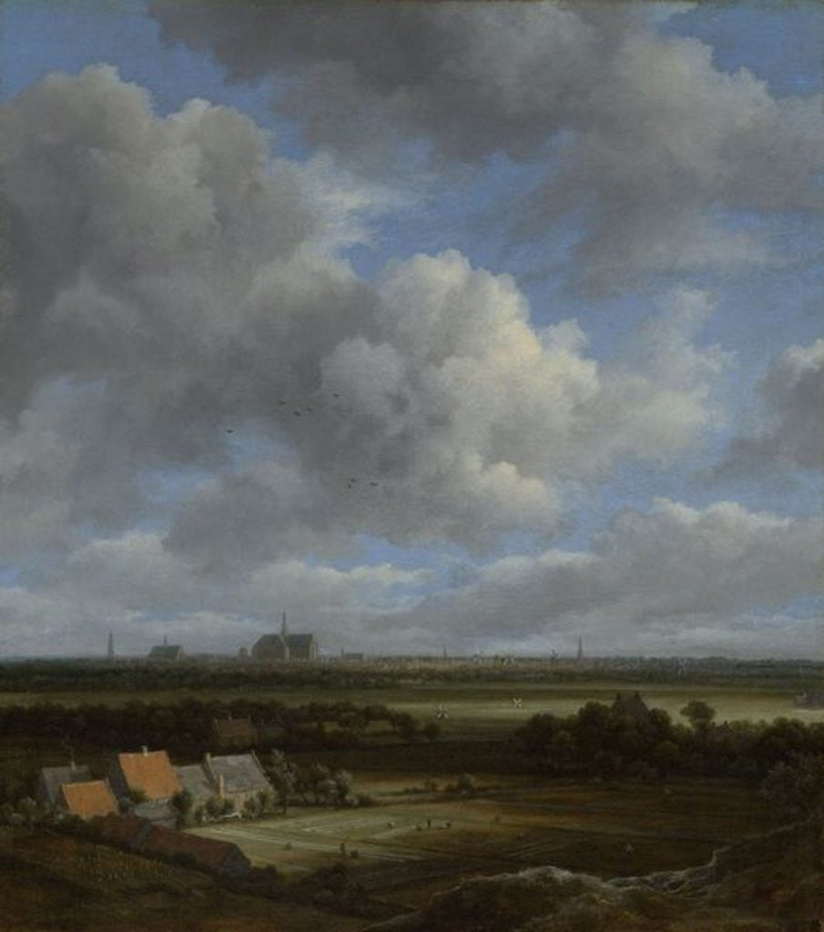 Detail of View of Haarlem from the Northwest with the Bleaching Fields in the Foreground by Jacob Isaaksz. or Isaacksz. van Ruisdael
