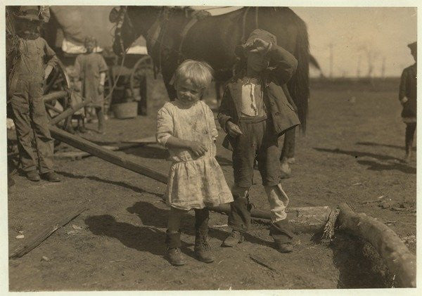 Cotton picker aged 4 who picks 15 pounds a day regularly and 7 year old who picks 50 by Lewis Wickes Hine