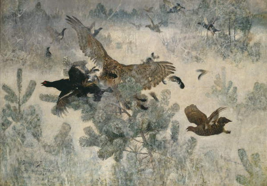 Detail of Hawk and Black Game, 1884 by Bruno Andreas Liljefors