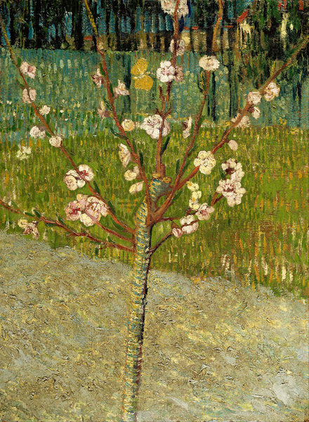 Detail of Almond Tree in Blossom by Vincent van Gogh