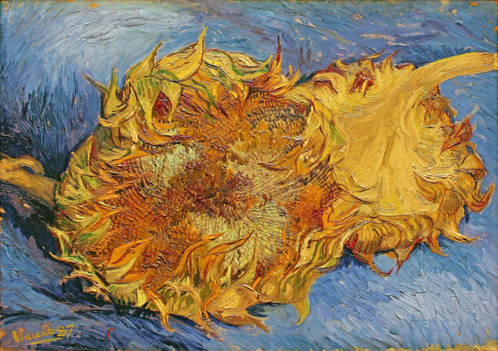 Detail of Sunflowers by Vincent van Gogh