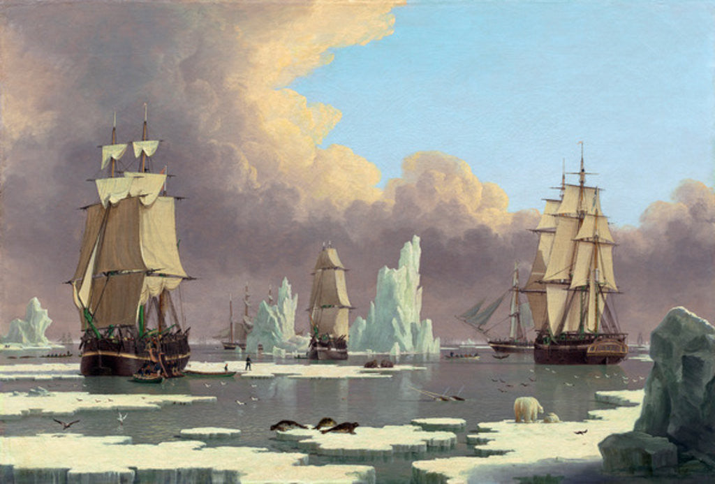 "The Northern Whale Fishery: The ""Swan"" and ""Isabella"""