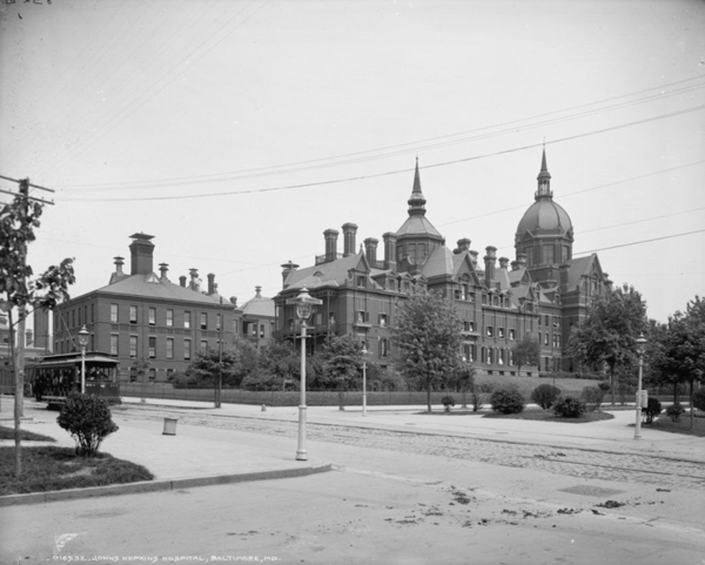 Detail of Johns Hopkins Hospital, Baltimore, Md by Detroit Publishing Co.