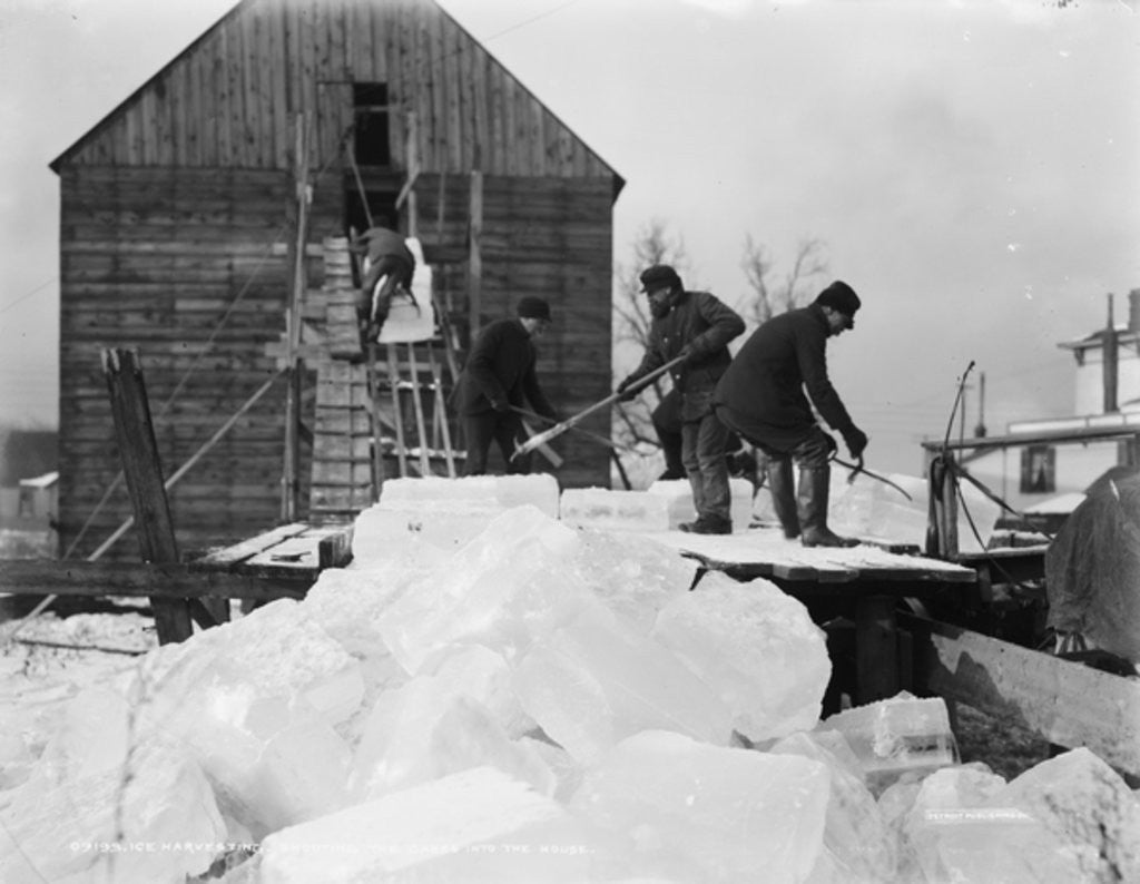 Detail of Ice harvesting, shooting the cakes into the house by Detroit Publishing Co.