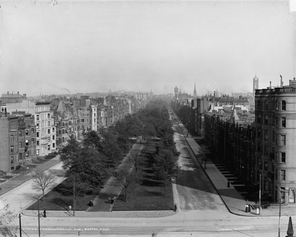 Detail of Commonwealth Ave., Boston, Massachusetts by Detroit Publishing Co.
