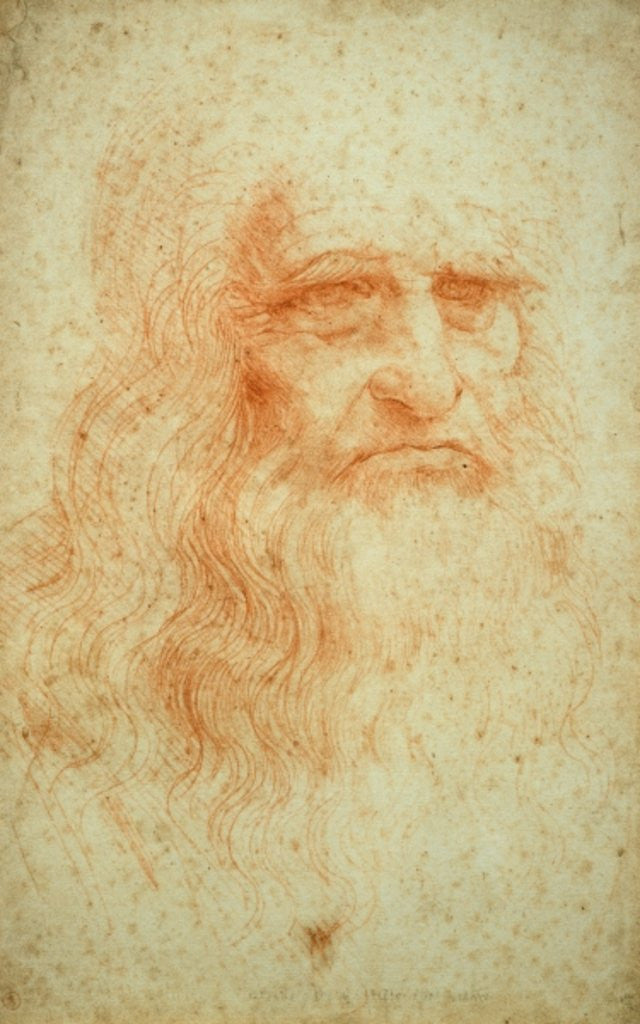 Detail of Self portrait by Leonardo da Vinci