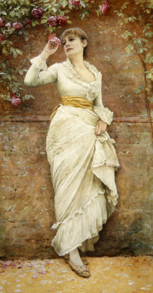 Detail of The Rose by Edward Killingworth Johnson