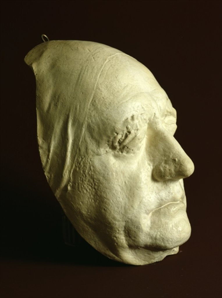Detail of Goethe's Mask by Ludwig Weisser