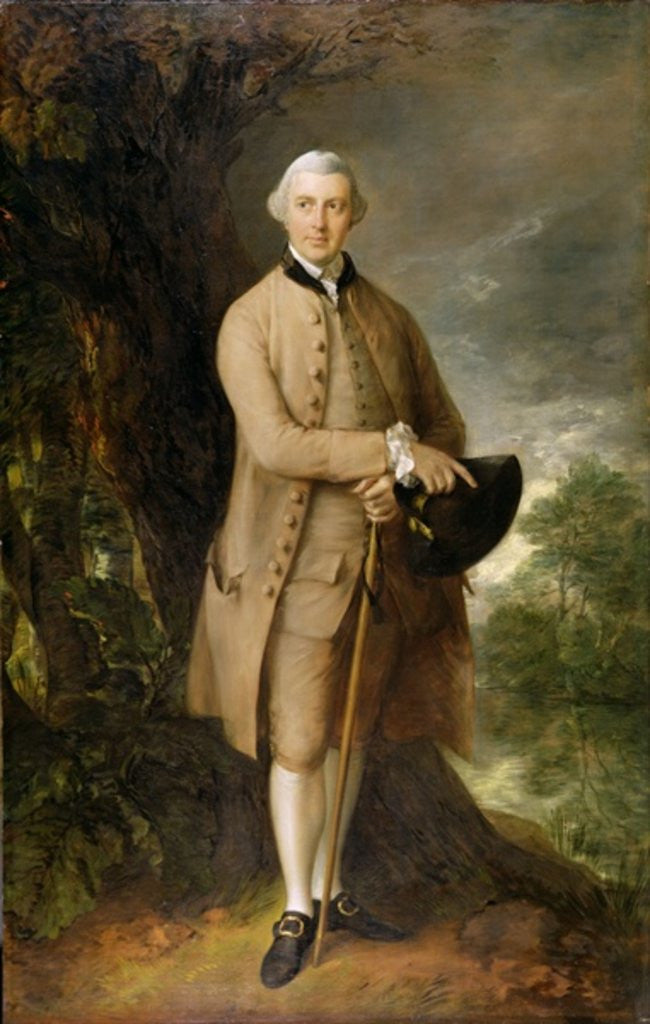 Detail of William Johnstone-Pulteney, Later 5th Baronet by Thomas Gainsborough