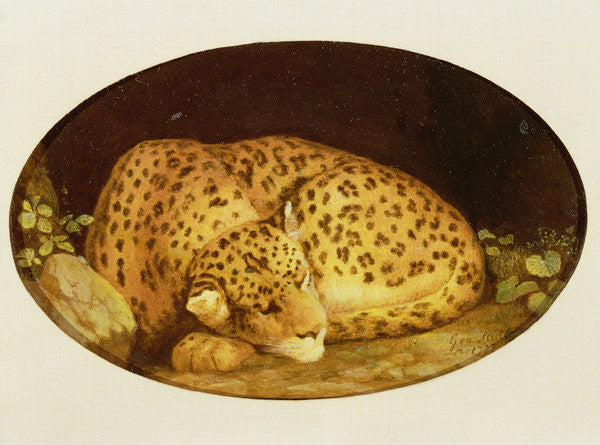 Detail of Sleeping Leopard by George Stubbs
