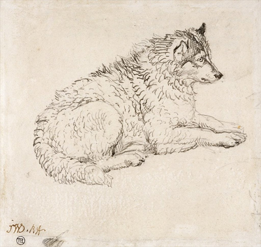 Detail of Arctic Dog, Facing Right by James Ward