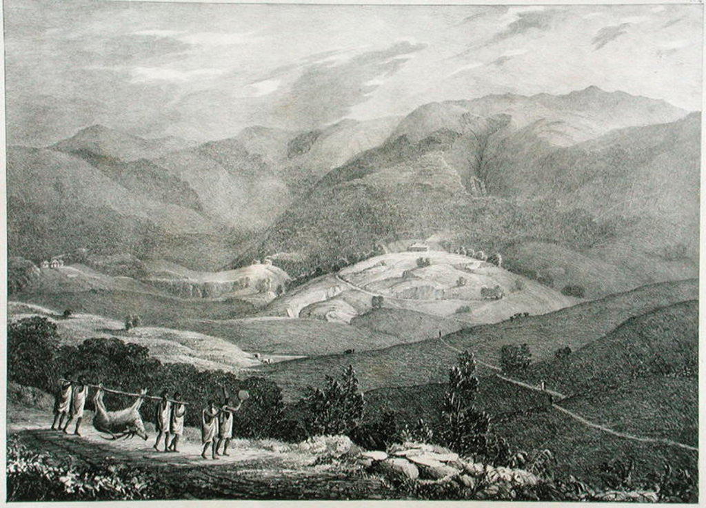 Detail of Ottacamund, View of the Great Dodabetta, Neelgherry Mountains by Captain E. A. McCurdy