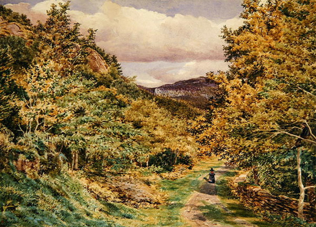 Detail of A Road near Bettws-y-Coed by George Price Boyce