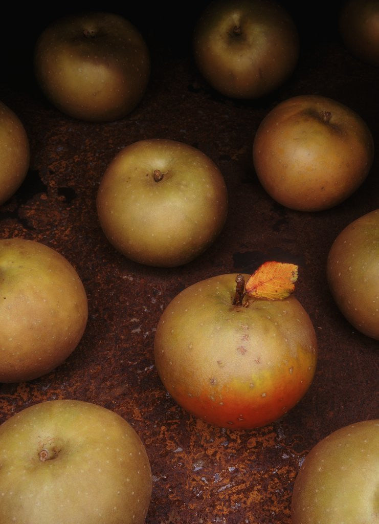 Detail of Apple With Leaf by Corbis