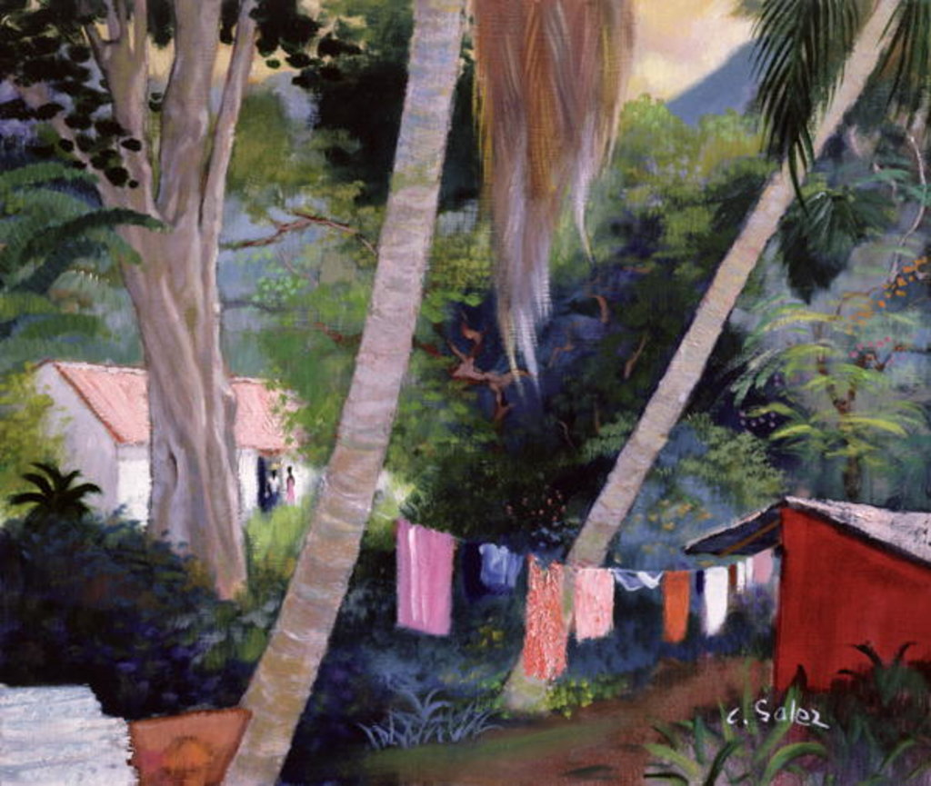 Detail of Drying Washing, Guadeloupe by Claude Salez