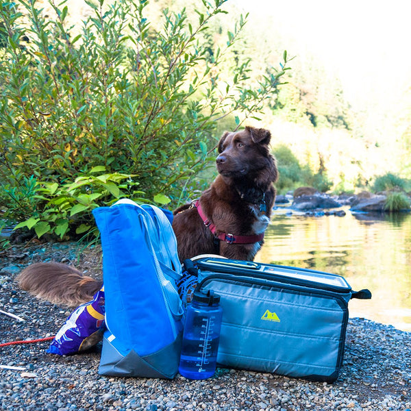 Hiking with Dogs: Pack Smart