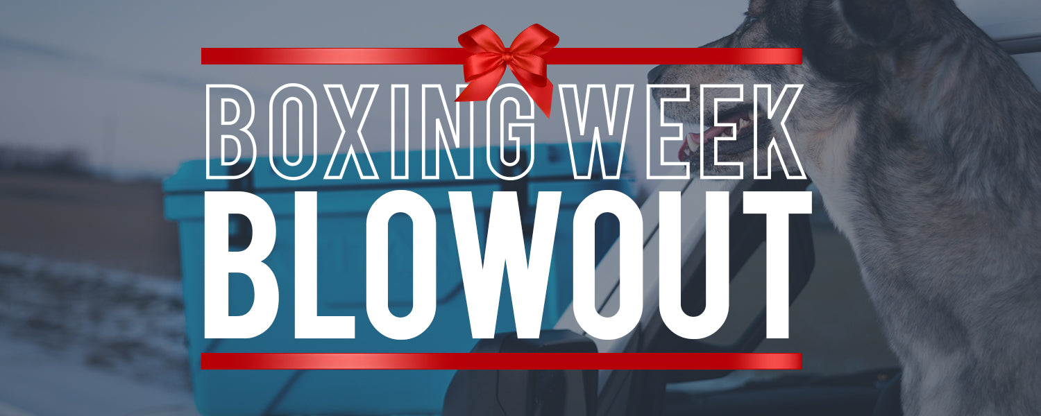 boxing week blowout graphic