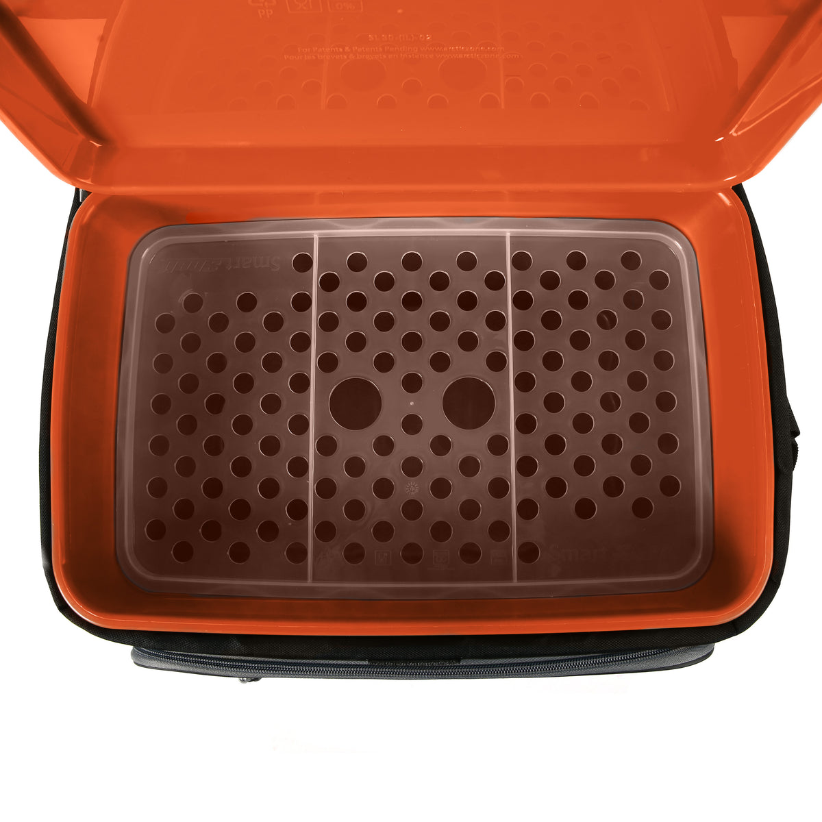 Titan Deep Freeze® 30 Can Zipperless™ Cooler - Moss - Inside