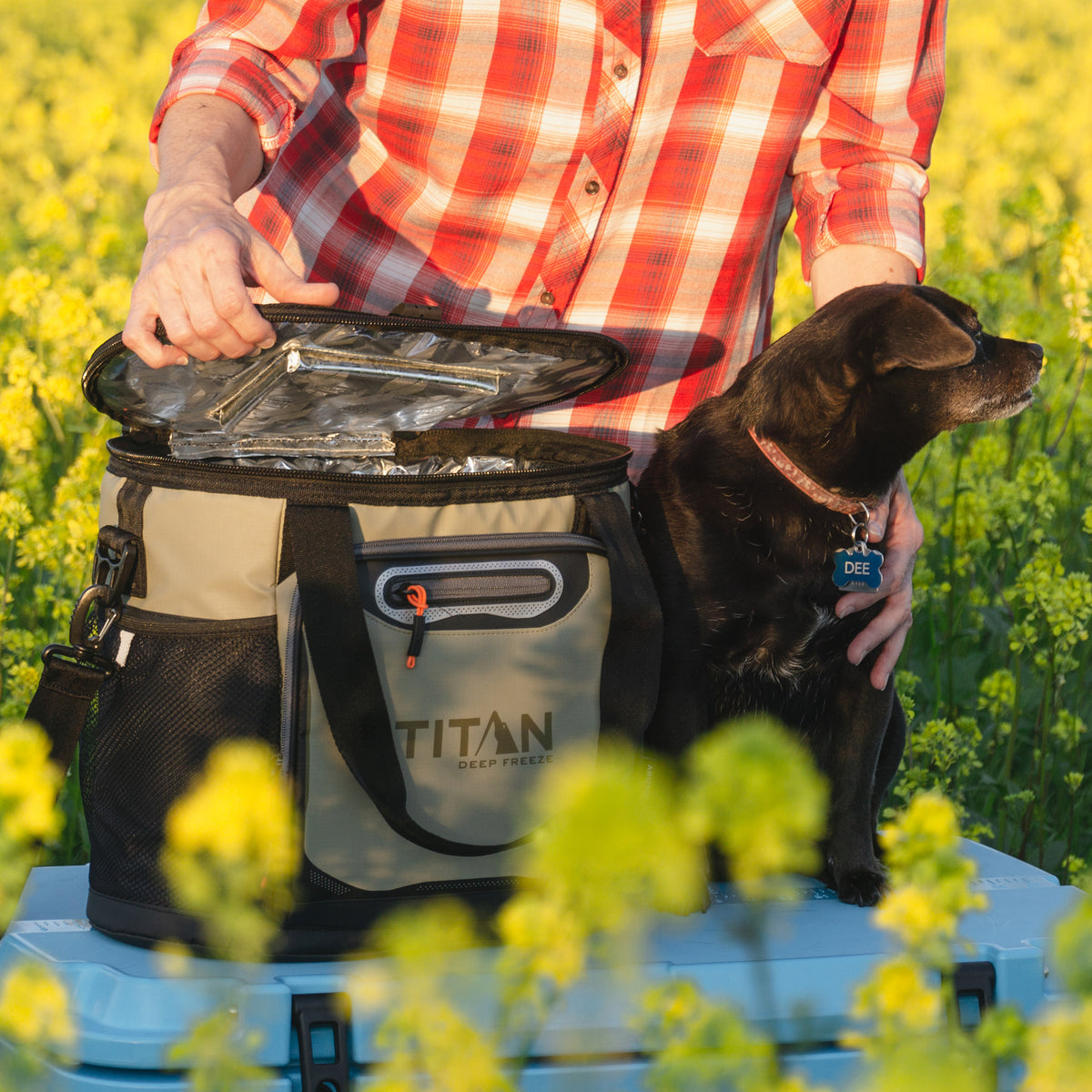 Titan Deep Freeze® 24 Can Bucket Tote - Tan - Lifestyle, dog with the cooler in a flower field
