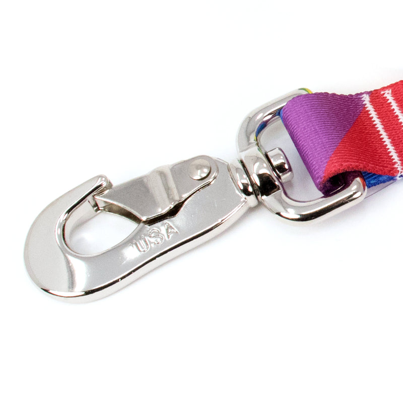 Buttonsmith Rainbow Flag Dog Leash Fadeproof Made in USA - Buttonsmith Inc.