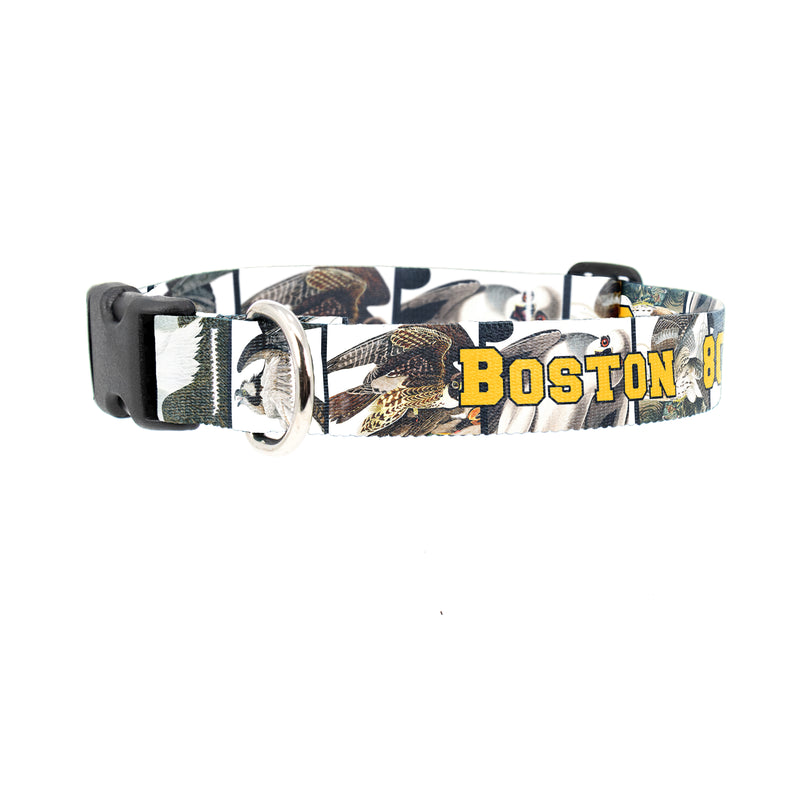 Buttonsmith Audubon Raptors Custom Dog Collar - Made in USA
