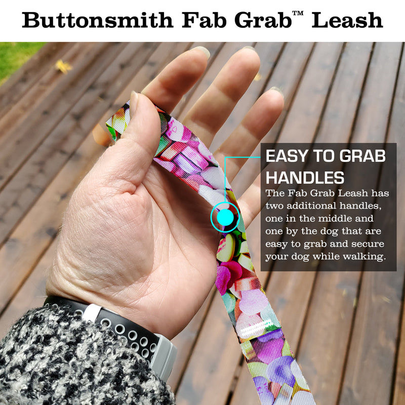 Conversation Hearts Fab Grab Leash - Made in USA