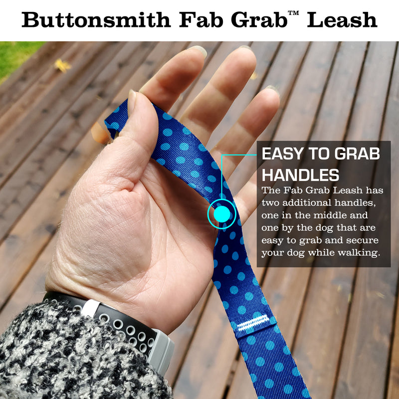 Blue Dots and Stripes Fab Grab Leash - Made in USA