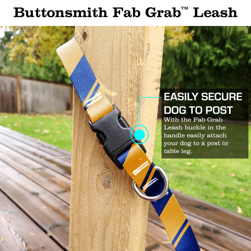 Sporty Blue Yellow Fab Grab Leash - Made in USA
