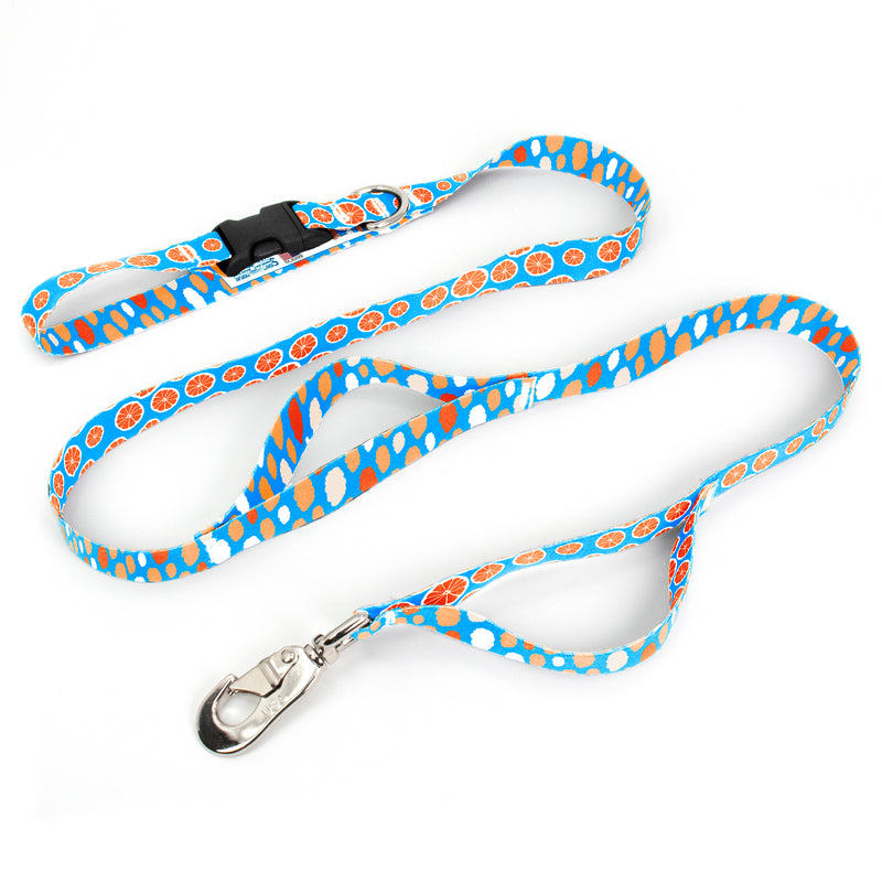 Tangerine Dreams Fab Grab Leash - Made in USA