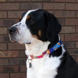 Buttonsmith Design Your Own Dog Collar - Made in USA