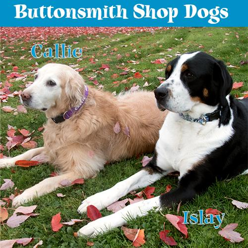 Buttonsmith Pewter Lime Dots Dog Collar - Made in USA - Buttonsmith Inc.